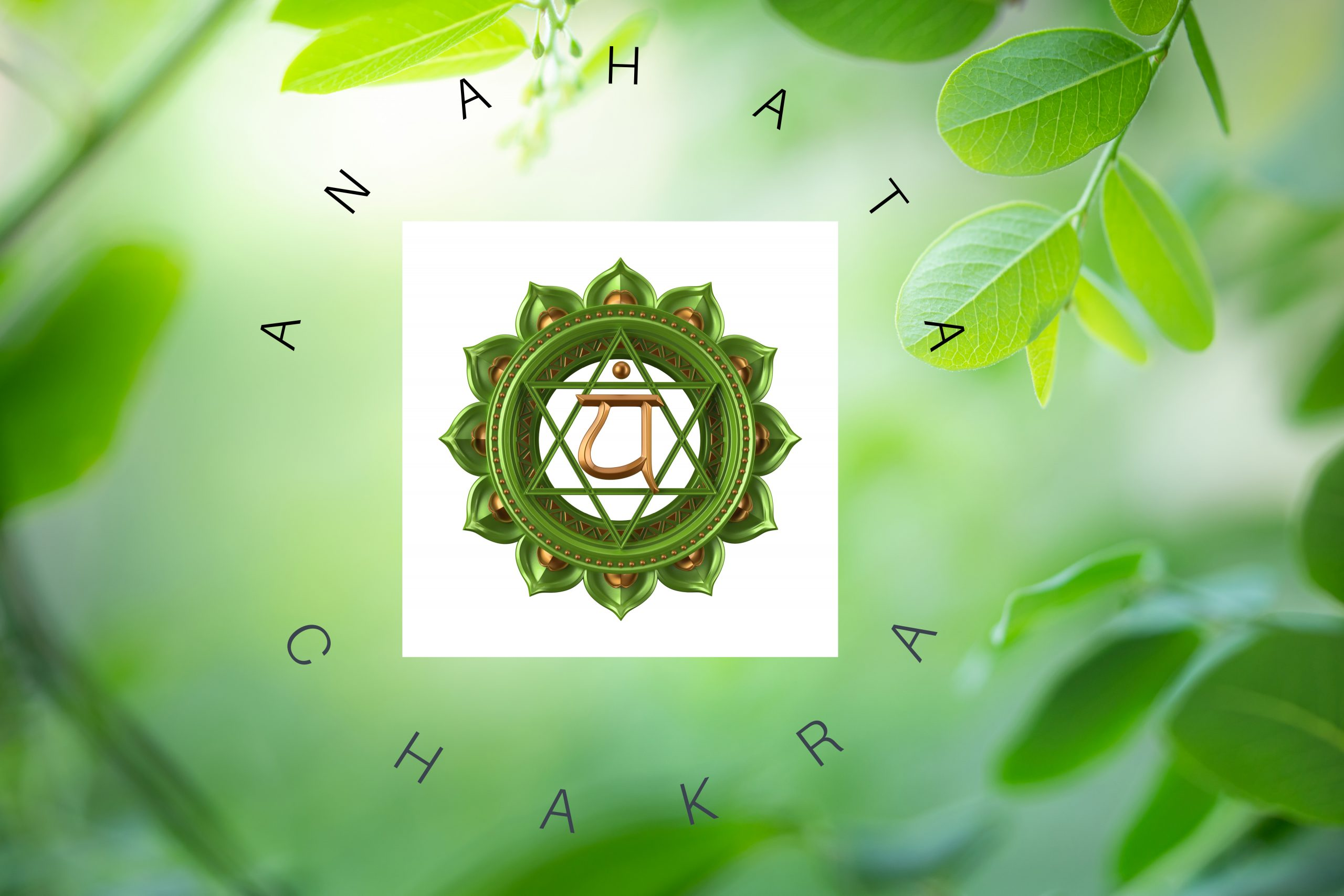 Read more about the article Anahata Chakra – The Love Centre